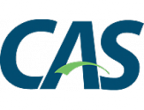 Instalasi Apereo CAS Untuk Development